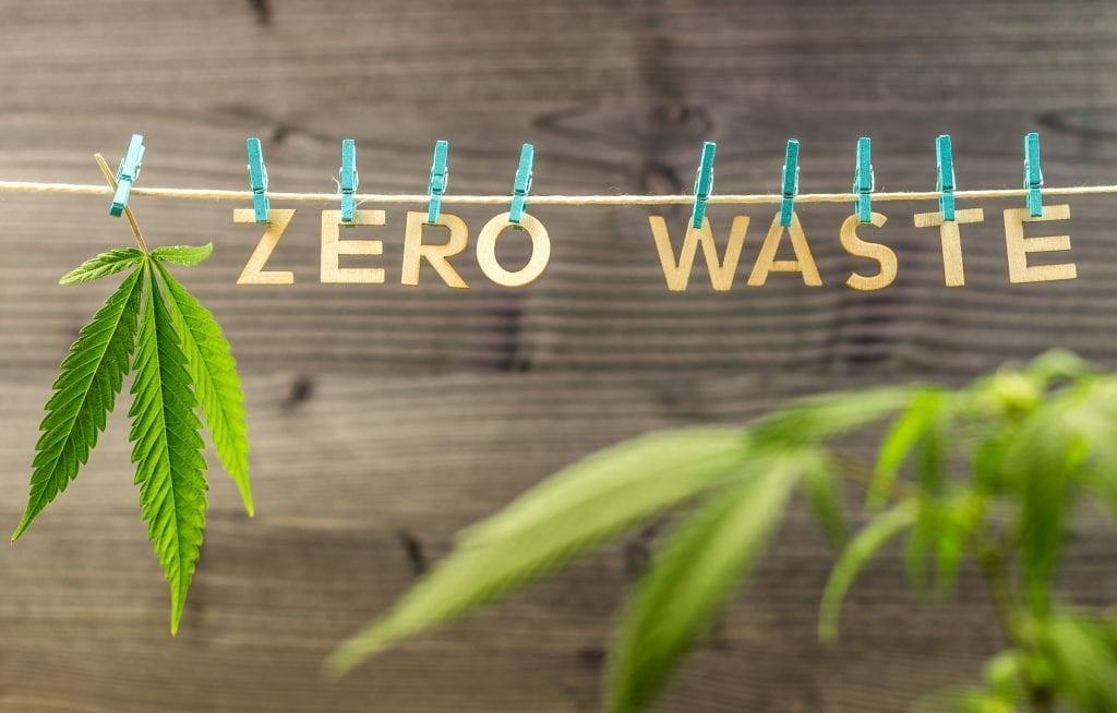 growing hemp helps the environment