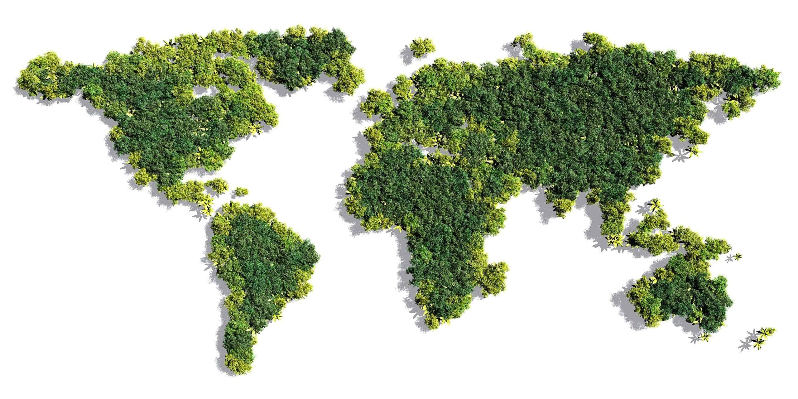world's largest hemp producers
